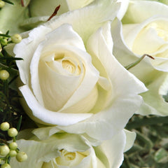Scented white rose bouquet