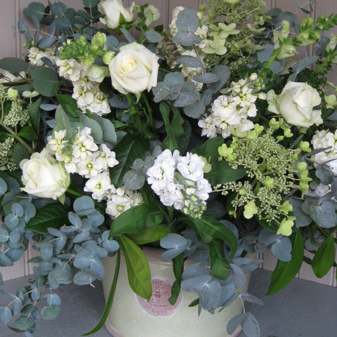 Arrangement in large Kew Botanics planter