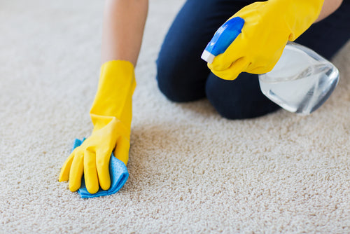 How To Remove Carpet Stains In Commercial Settings spraying water on carpet and blotting with cloth