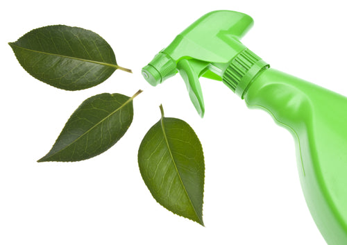 9 Ways To Keep Your Employees Safe When Cleaning green eco friendly cleaning bottle