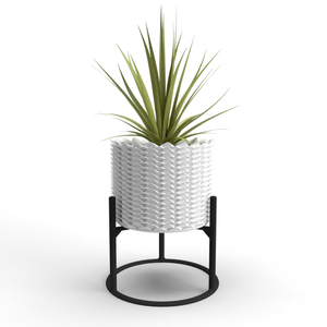 """Welcome Back"" Pineapple Planter: Culture and Bloom; Culture + Bloom: Home, Garden and Art Decor : White"