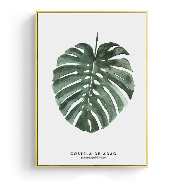 Monstera Deliciosa Canvas and Plant Wall Decor