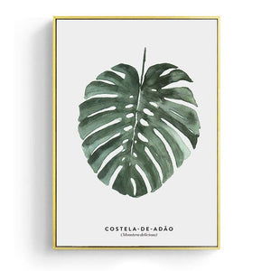 Load image into Gallery viewer, Monstera Deliciosa Canvas and Plant Wall Decor