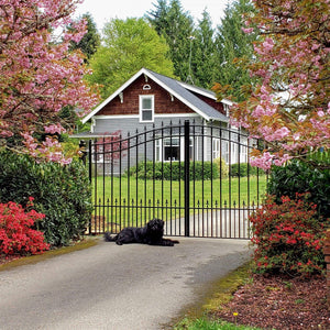 ALEKO Gates and Fences Black ALEKO Products Steel Dual Swing Driveway Gate - ST.PETERSBURG Style - 16 x 6 Feet DG16STPD-AP