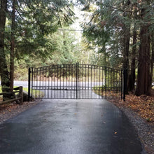 Load image into Gallery viewer, ALEKO Gates Black Steel Dual Swing Driveway Gate - PARIS Style - 16 x 6 Feet DG16PARD-AP