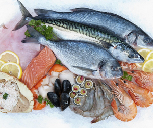 Ferry Fish - Fresh Fish in Dumfries and Galloway. Fishmonger offering free home delivery in Newton Stewart, Stranraer, Wigtown, Whithorn, Gatehouse of Fleet, Kirkcudbright, Castle Douglas, Dumfries, Annan, Thornhill, Moniaive, Sanquhar.