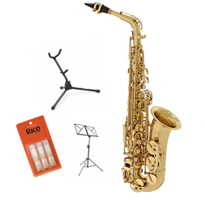 Elkhart 100AS Alto Saxophone - Ex Hire Package