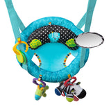Bright Starts Bounce n' Spring Deluxe Door Jumper