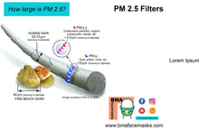 Load image into Gallery viewer, PM2.5 Filter Replacements for Face Mask:  Qty 20 Filters