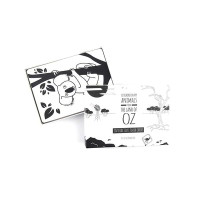 Australia black and White Flash Cards box opened