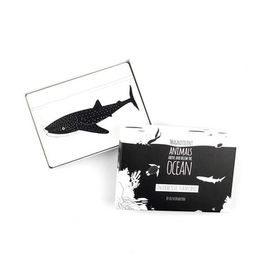 Ocean black and White sensory cards box opened