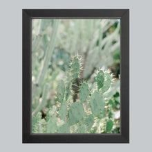 Load image into Gallery viewer, Cacti #1