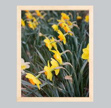 Load image into Gallery viewer, It Must Be Spring