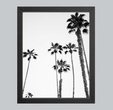 Load image into Gallery viewer, Palms of Palm Springs #2