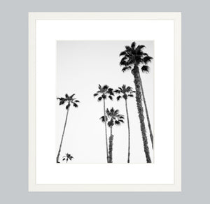 Palms of Palm Springs #2