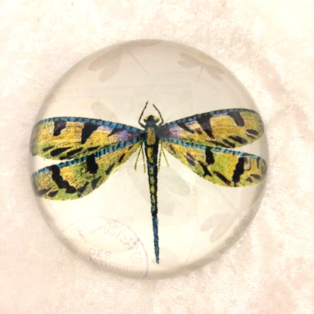 Dragonfly Paperweight