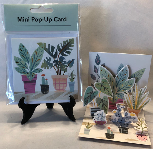 Potted Plants Everyday Card