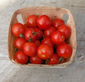 4E Farm - Cherry Tomatoes