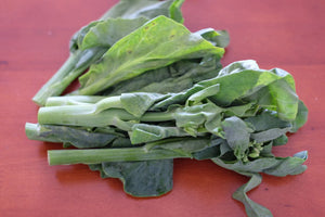 4E Farm --Gai Lan (Chinese Broccoli):