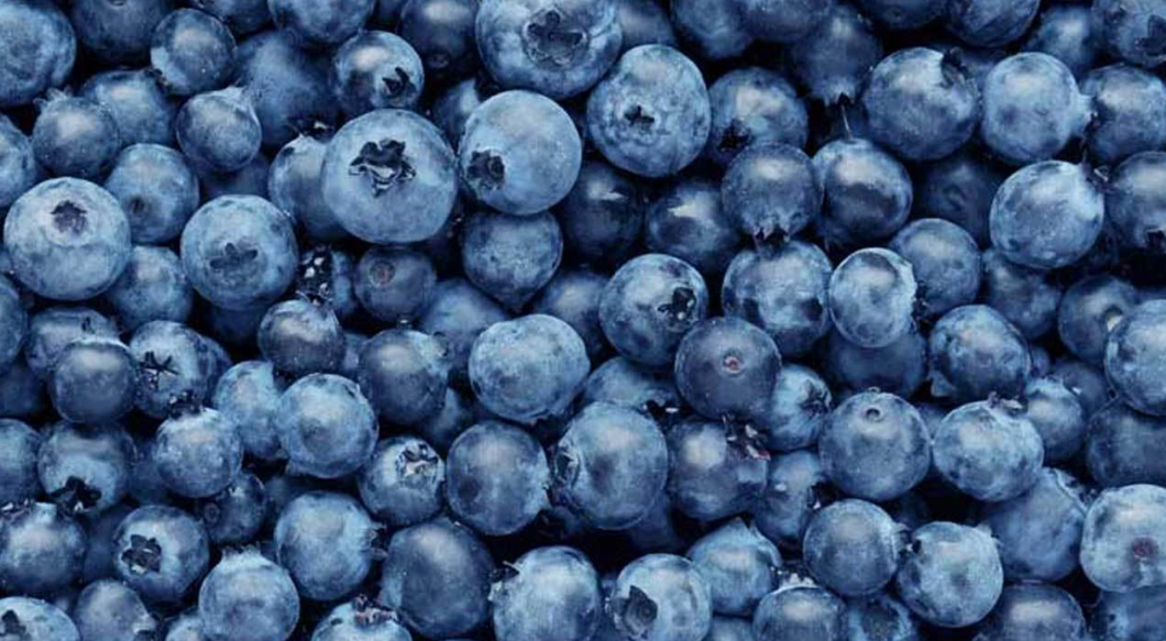 Ann Maries Farm Stand --Blueberries
