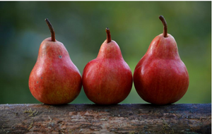Ann Maries Farm Stand --Red Barlett Pears