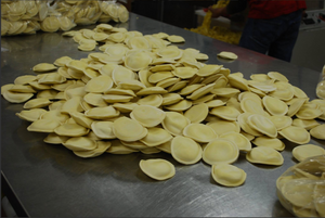 Papa Pasquale Ravioli --11 Different Gourmet Flavors!