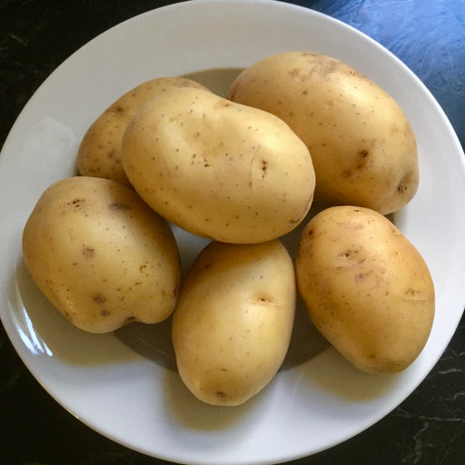 Yukon Gold Potatoes / lb