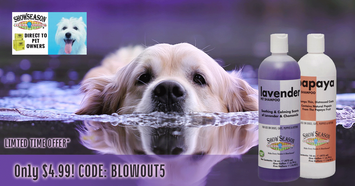 Best Dog Shampoo for