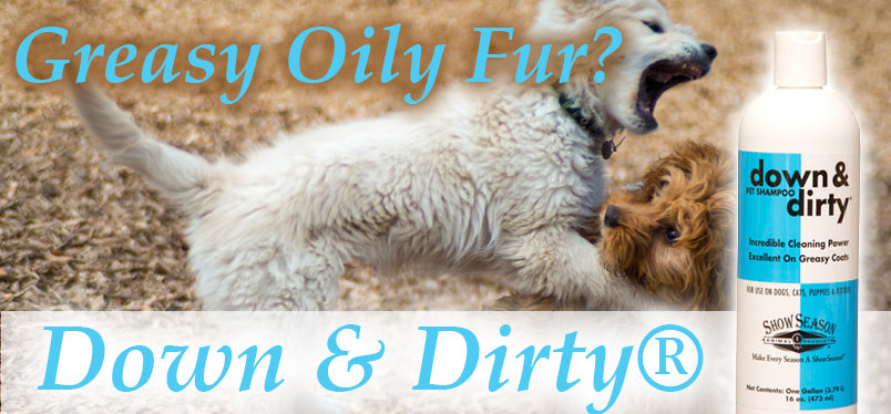 Dog Shampoo For Oily Fur