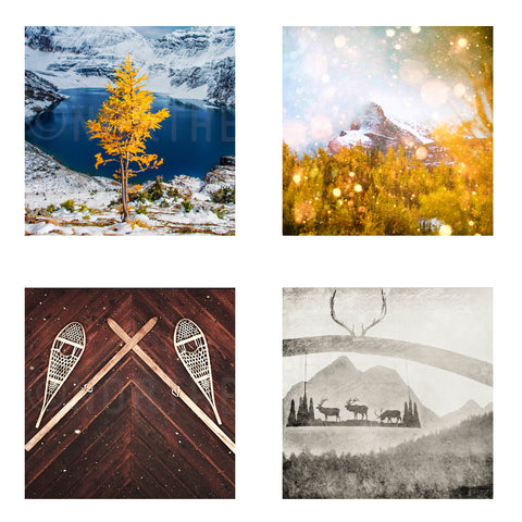 Metallic Mini Magnet Set of 4 <br> Rustic Mountain Moments No. 6