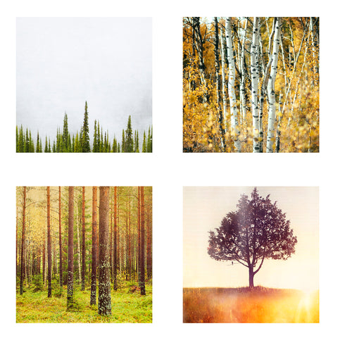 Metallic Mini Magnet Set of 4 <br> Trees
