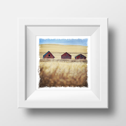 "CLEARANCE 5x5"" Fine Art Print <br>Three Little Farm Buildings<br> Metallic Finish"