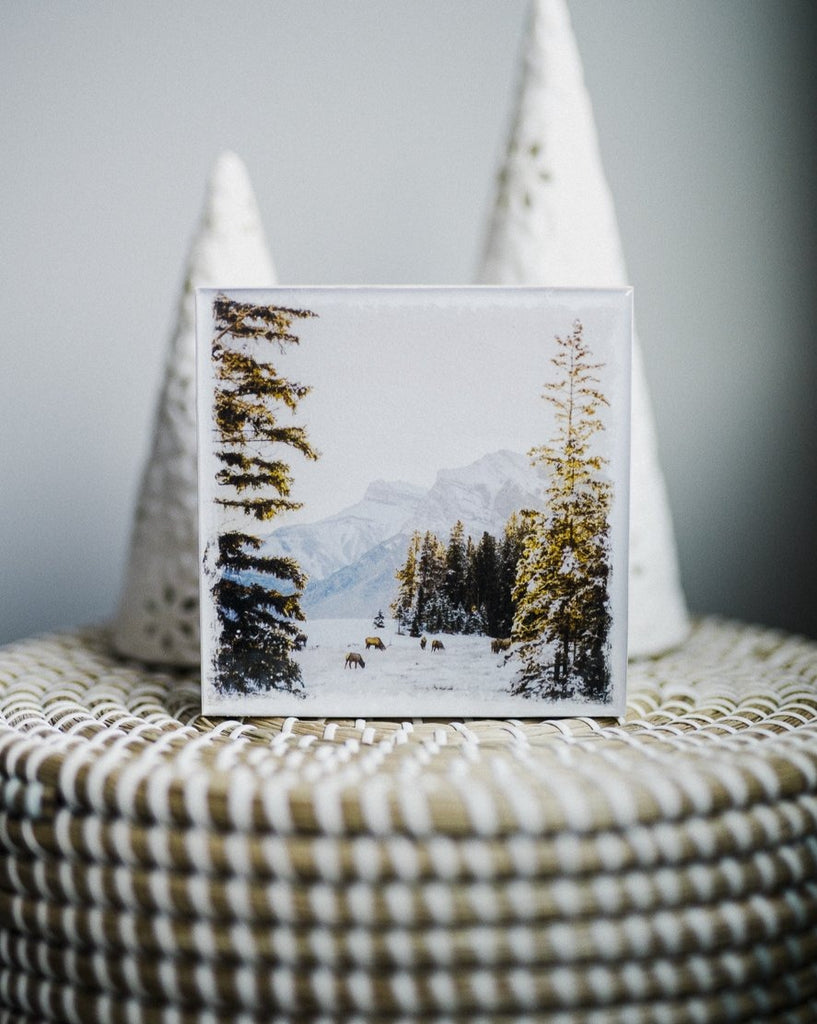"Winter Sunrise in Canmore with Elk <br> 5x5"" Signature Glossy Art Block  <br> New Pine Wood Edges"