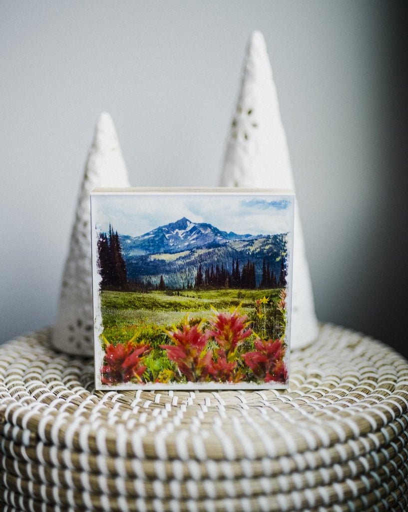 "Wildflowers in Bloom<br> 5x5"" Signature Glossy Art Block  <br> Rustic Barn Wood Edges"