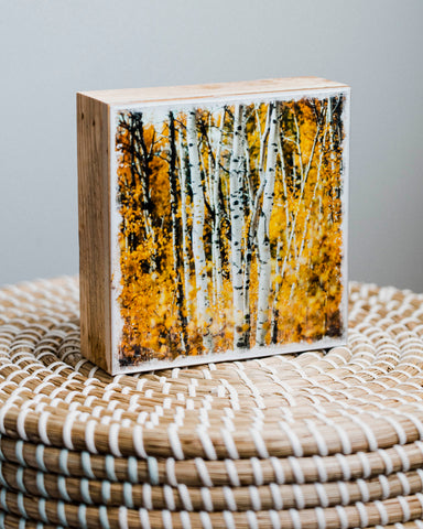 "Autumn Aspens in Kananaskis <br> 5x5"" Signature Glossy Art Block  <br> Rustic Barn Wood Edges"