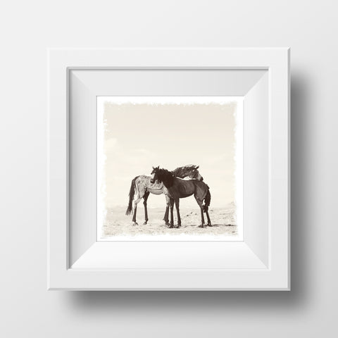 "SALE 5x5"" Fine Art Print <br>Two Bleu Horses in Montana<br> Metallic Finish"