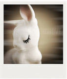 Discontinued Polaroid Magnet <br> Porcelain Bunny<br>Metallic Finish