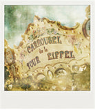 Discontinued Polaroid Magnet <br>Carrousel in Paris<br> Metallic Finish