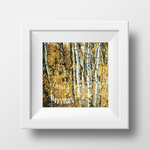 "Discontinued 5x5"" Print <br>Choose Adventure + Aspens<br> Various Finishes"