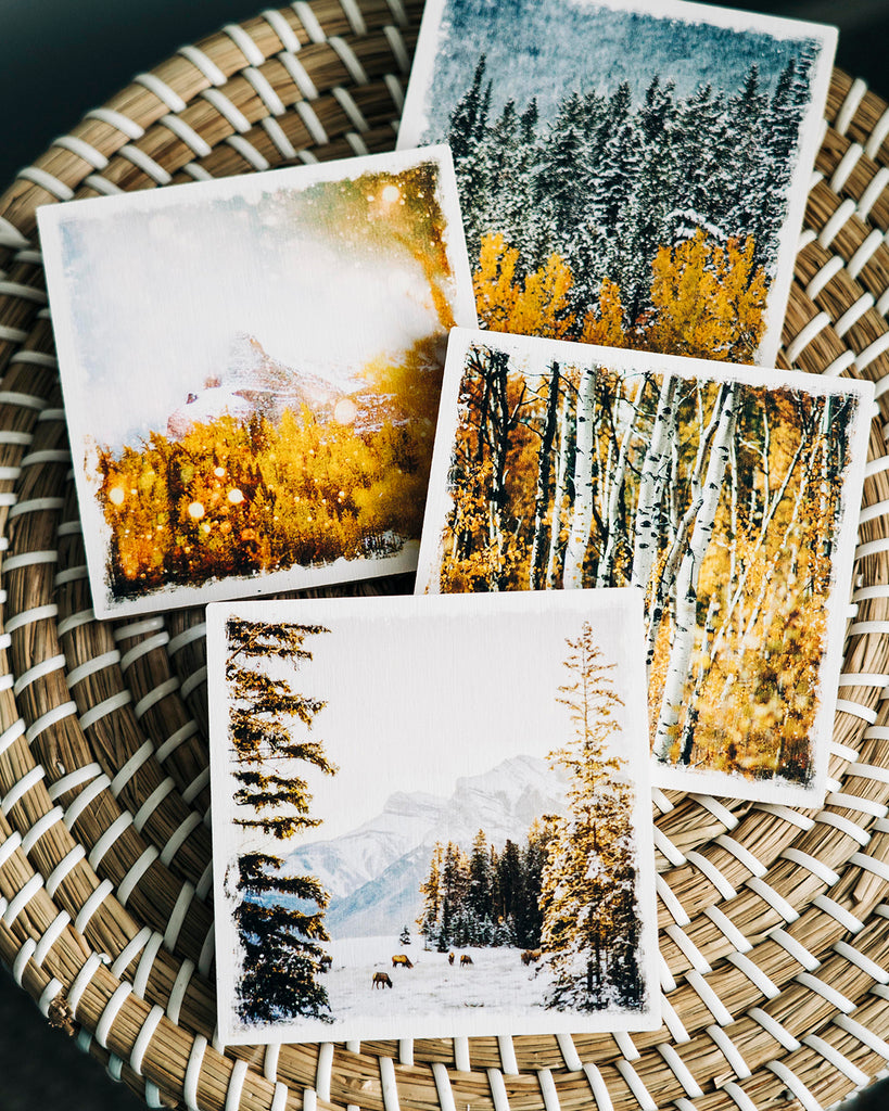 DAY 10! <br> Set of 4 Alberta Made Birch Wood Coasters <br> Alberta Trees