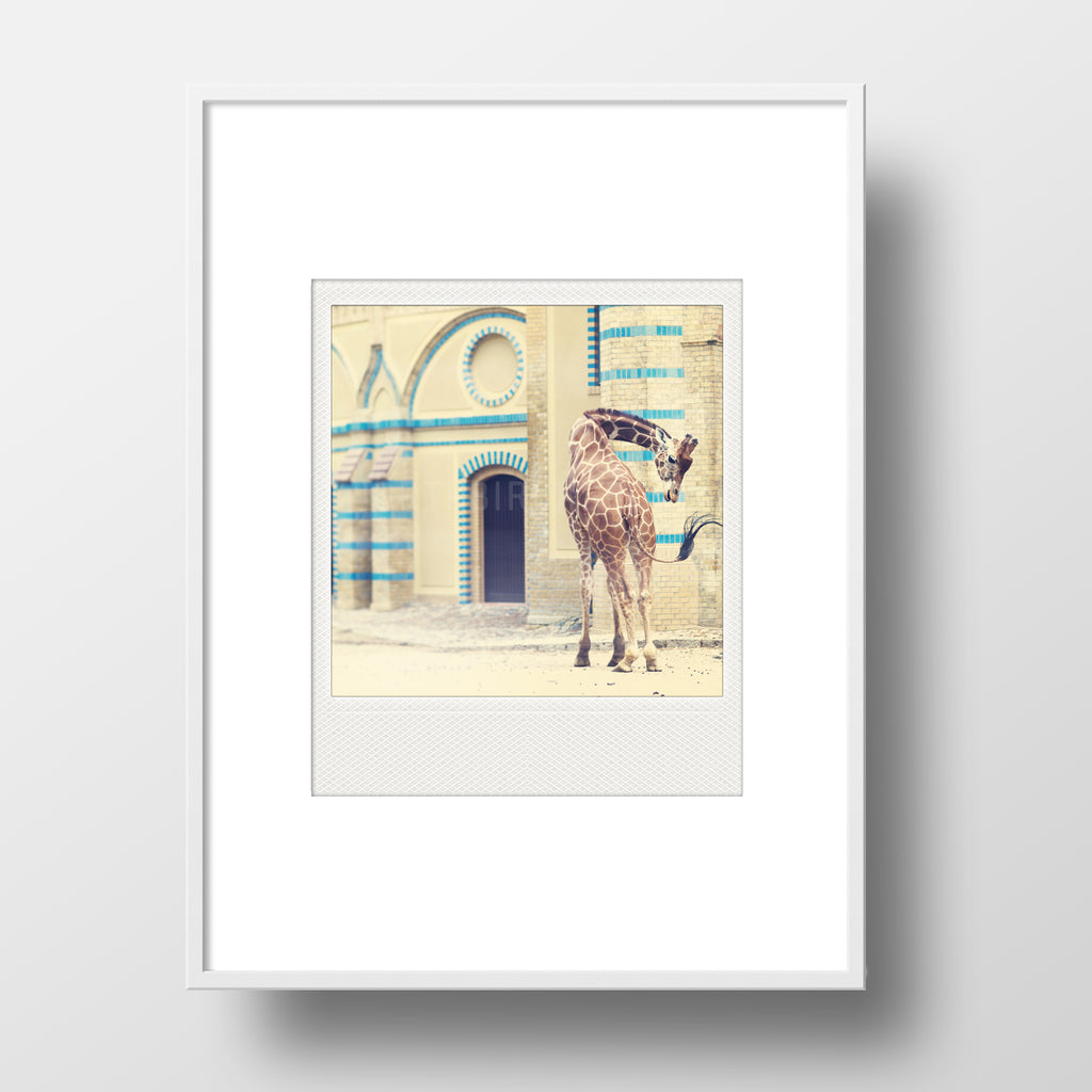 CLEARANCE<br> Metallic Polaroid Magnet <br>Giraffe at Historic Berlin Zoo