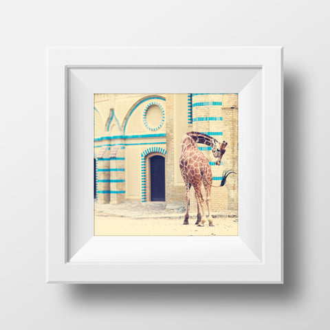 Giraffe at the Historic Berlin Zoo <br> Archival Fine Art Chromogenic Print