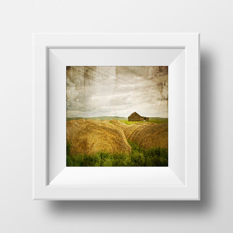 SALE Print<br>Haybales in Alberta <br> Various Finishes + Sizes