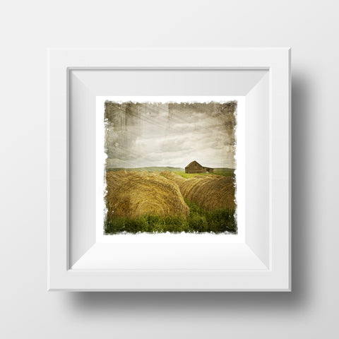"CLEARANCE 5x5"" Fine Art Print <br>Haybales in Alberta <br> Metallic Finish"