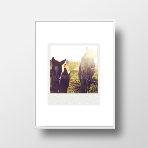 CLEARANCE <br>Metallic Polaroid Magnet <br>Alberta Ranch Sunset