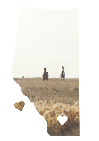 Alberta Love Magnet <br> Two Horses