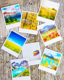 SALE<br> Metallic Polaroid Magnet <br>Greetings from the Canadian Rockies <br>Morning Light Banff N.P