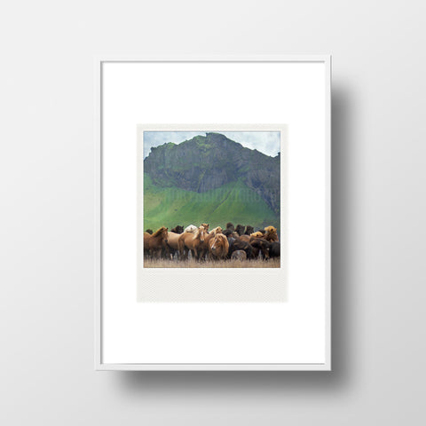 CLEARANCE <br> Metallic Polaroid Magnet <br>Icelandic Horses