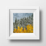 CLEARANCE Print<br>Kananaskis Autumn Snowfall<br>Metaliic Finish + Various Sizes