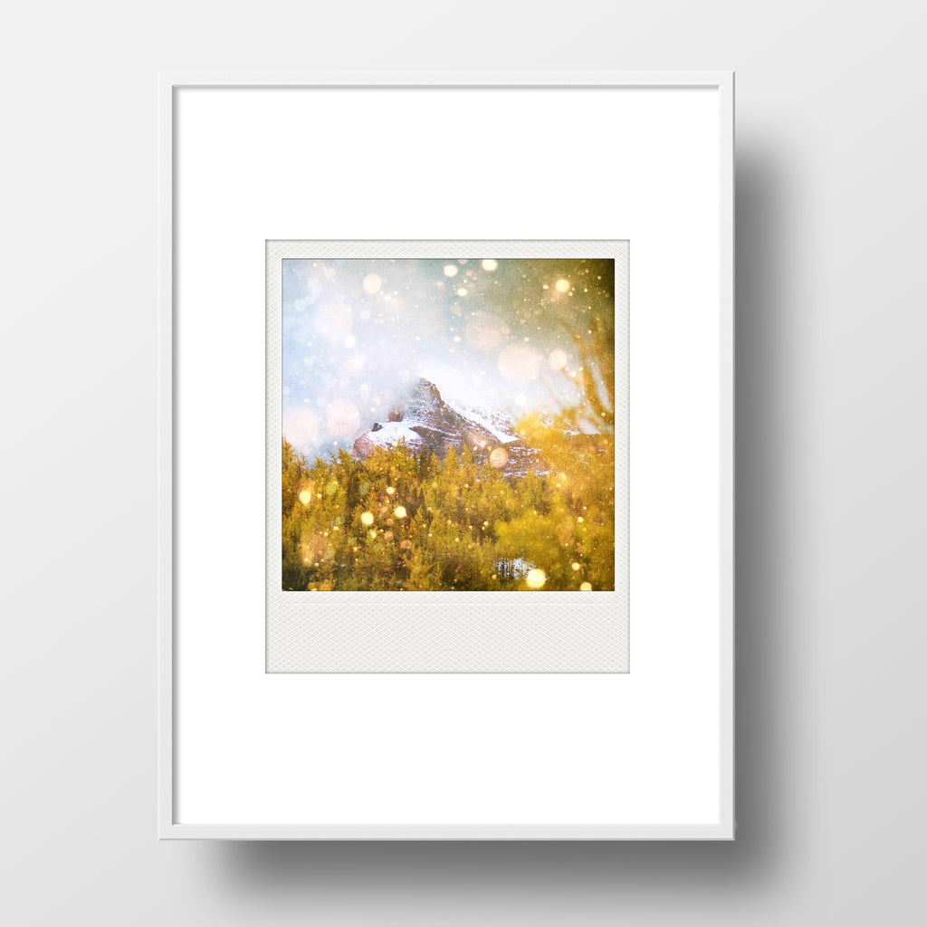 SALE<br> Metallic Polaroid Magnet <br>Larch Valley <br> Banff National Park